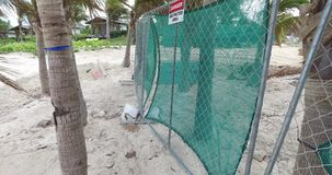 Man is placing protective fence near the beach,Bahamas stock video