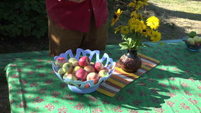 Man placing ripe fresh apples in plastic bowl placed on table, 4K. Man wearing red shirt placing ripe fresh apples in plastic bowl placed outdoors in the yard on stock video footage
