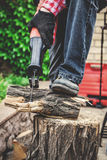 Man in plaid shirt sawing piece of wood on stump Stock Images