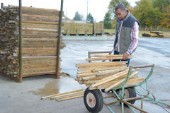 Man with planks wood on trolley Stock Photo