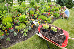 Man planting in the garden. With gardening tools close by under the sun royalty free stock photos