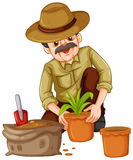 Man planting plant in the pot. Illustration Royalty Free Stock Image
