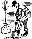 Man Planting Tree Stock Photography