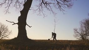 Man Planting Tree in field. Sunny sunrise, sunset. Silhouette. Spring or summer. Man Planting Tree. Silhouette. Spring or summer stock footage