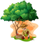Man planting tree in the garden Royalty Free Stock Images