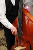 Man play contrabass close-up. Man's hands playing contrabass Stock Photography