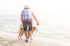 A man play with the dog on the beach. A man play with the dog on the beach and sunset Stock Photos