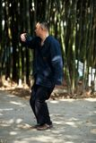 Man play taiji boxing Stock Photography