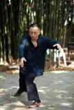 Man play taiji boxing Royalty Free Stock Photo