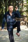Man play taiji boxing Royalty Free Stock Images