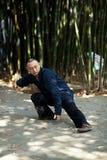 Man play taiji boxing Stock Photo