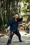 Man play taiji boxing Royalty Free Stock Image