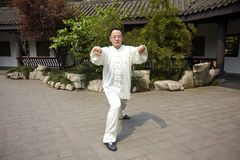 Man play taiji boxing Royalty Free Stock Photos