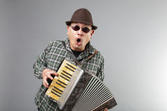 Man playing accordion. Man playing a French accordion royalty free stock photo