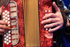 Man playing an accordion royalty free stock image