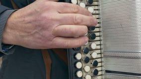Man playing accordion accordion arm stock video