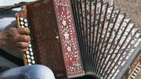 A man playing accordion in summer outdoors stock video footage