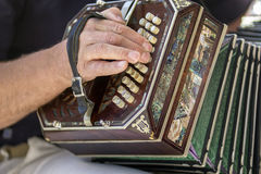 Man playing the bandoneon traditional tango instrument Stock Images