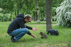 Man playing the cat outdoor royalty free stock photography