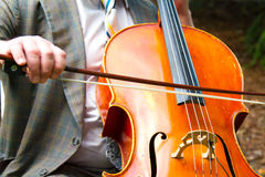 Man Playing Cello Stock Image