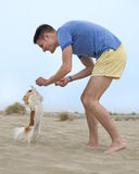 Man playing with chihuahua Stock Images