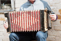 Man playing concertina Stock Images