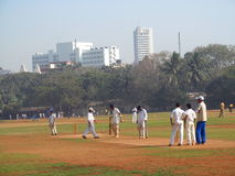 Man playing cricket on the grass of the stadium in Mumbai India Royalty Free Stock Images