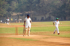 Man playing cricket on the grass of the stadium in Mumbai India Stock Photography