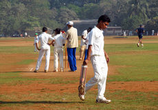 Man playing cricket on the grass of the stadium in Mumbai India Royalty Free Stock Image