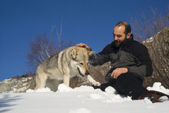 Man playing with dog. Man playing with Czechoslovakian wolf dog Stock Image