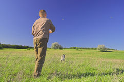 Man playing with the dog. Man playing with dog on the meadow royalty free stock photography