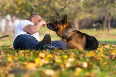 Man Playing With Dog German Shepherd In Park. Man Llying Down Outdoors With His Pet Dog German Shepherd stock photography