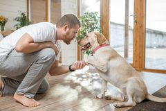 Man playing with dog in the house. Man playing with the dog giving a paw sitting on the floor in the house stock photos