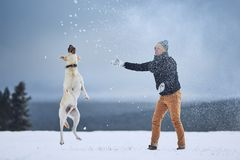 Man playing with dog in winter landscape stock photography
