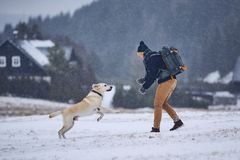Man playing with dog in winter landscape stock images