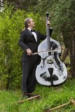 Man playing the double bass in park Stock Photography