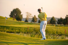 Man playing golf Royalty Free Stock Photo