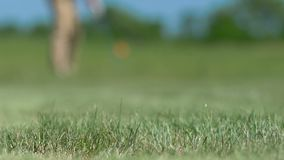 Man playing golf making hit and ball falling near hole on fairway, success. Stock footage stock footage