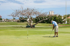 Man playing golf on a yard in San Jose del Cabo Royalty Free Stock Images
