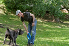 Man playing with his dog. In a city park stock images