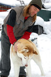 Man Playing with a Husky. Man playing with a friendly siberian husky Royalty Free Stock Photo
