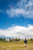 Man playing with kites in Steveston, Canada Stock Photography