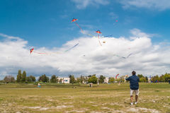 Man playing with kites in Steveston, Canada Stock Photos