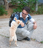 Man playing with little dog Stock Image