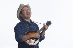 Man playing mandolin, horizontal Royalty Free Stock Image