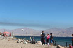 A man playing with a quadrocopter on the beach in Eilat, people, israel Stock Photos