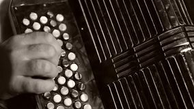 Man playing the Russian accordion. Bayan accordion Russian instrument. Man plays bayan accordion, close-up view stock video footage