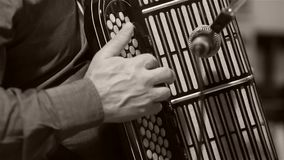 Man playing the Russian accordion. Bayan accordion Russian instrument. Man plays bayan accordion, close-up view stock footage