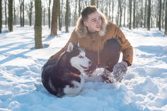 Man playing with siberian husky dog in snowy park. Young caucasian male playing with siberian husky dog in snowy park Stock Image