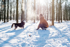Man playing with siberian husky dog in snowy park Royalty Free Stock Photography